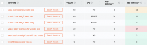 This is an example of a keyword research tool and how it shows the volume, SEO difficulty etc. of each keyword